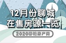 聊城市区2020年12月份在售房源信息一览