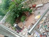莲湖花园 新小区孝心一楼 精装修 户型方正 通透 带50平院子