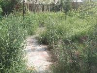 开发区转盘 80平米花园 新房精装未住 随时看房