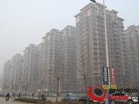 8年回本!首付15万起 租金年年递增 中国第二义乌 聊城 石家庄 包接送