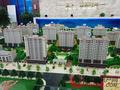 孟达·国际新城活动图