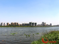裕昌·莲湖新城实景图