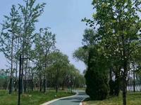 昌润莲城西临滨河苑 带车位带储藏室 包更名 可按揭 边户飘窗