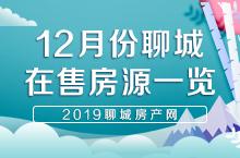 聊城市区2019年12月份在售房源信息一览