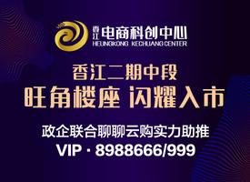 聊城香江光彩电商科创中心