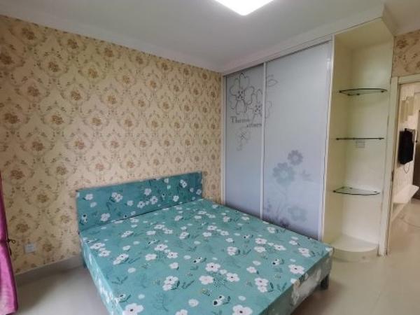 阿尔卡迪亚 水晶丽城 精装2室 拎包入住 照片实拍